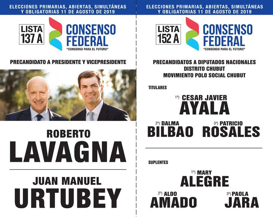 Finalmente la última boleta larga en Chubut, es la que lleva las lista 137 y 152, del Consenso Federal, con la fórmula Lavagna-Urtubey y la lista de diputados que encabeza César Ayala.