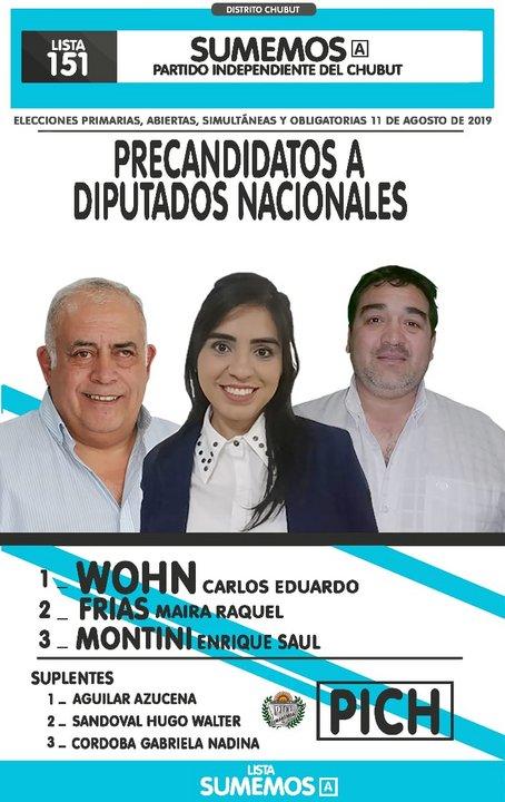 La boleta de la lista 151 corresponde a los candidatos del Pich, encabezados por el candidato Carlos Wohn.