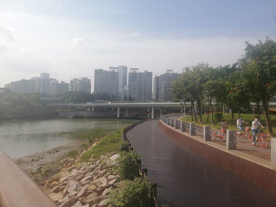 En Shenzhen poco a poco todo vuelve a la normalidad luego del pico máximo de la pandemia por el coronavirus.