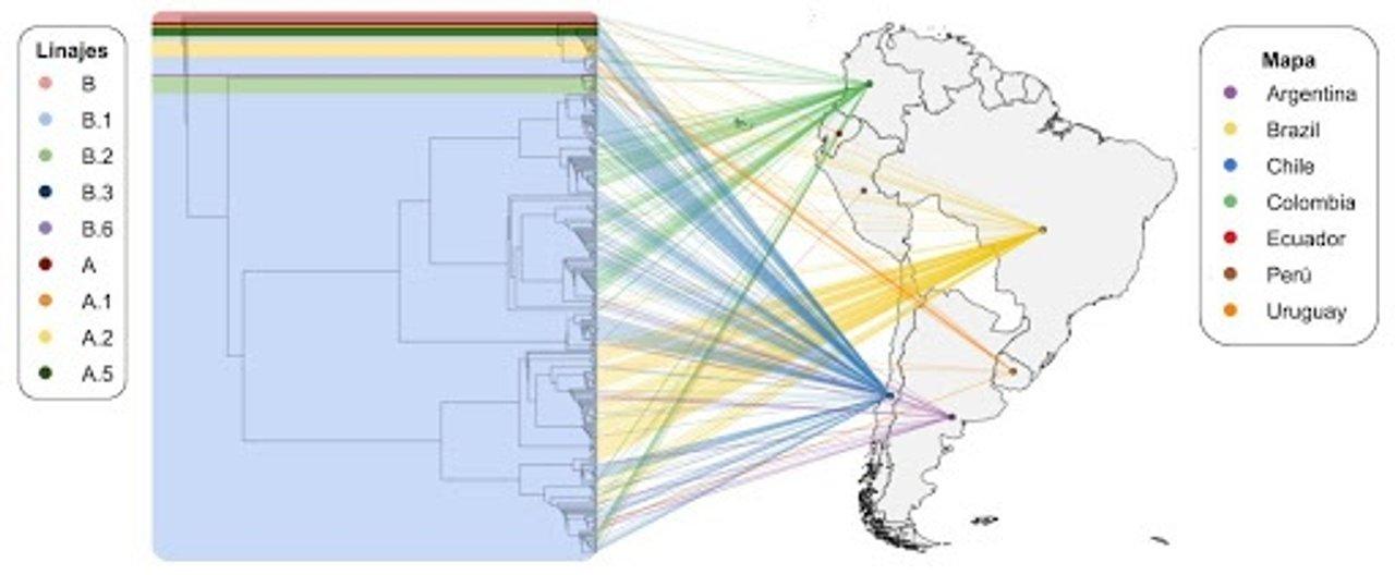 Proyecto Argentino Interinstitucional de genómica de SARS-CoV-2